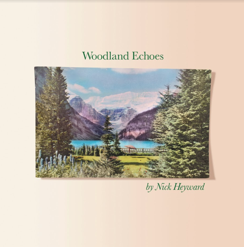 Nick Heyward Woodland Echoes Album Review Classic Pop Magazine