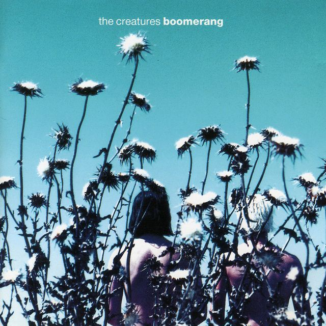 Pop Art: Richard Smith of Area interview - The Creatures - Boomerang