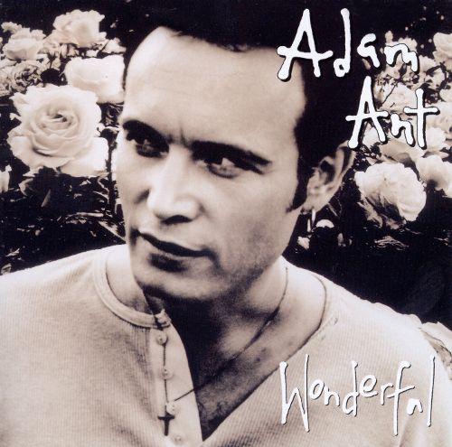 Wonderful Album Art